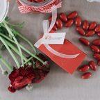 Bomboniera porta confetti rossa