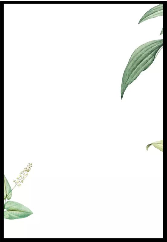 Partecipazione e bomboniera Botanica Avana
