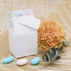 Bomboniera bianca con nastrino azzurro