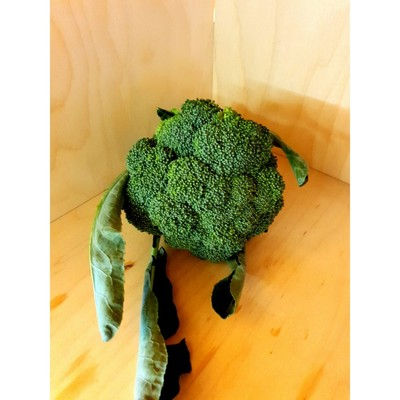 BROCCOLO SICILIANO BIO